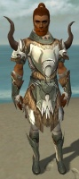 Paragon Norn Armor M gray front.jpg