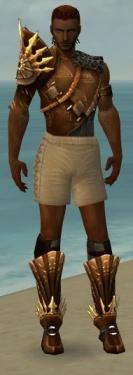 Ranger Elite Sunspear Armor M gray chest feet front.jpg