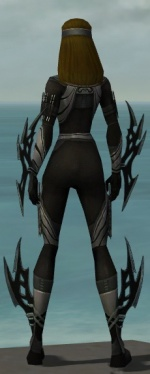 Assassin Vabbian Armor F gray back.jpg