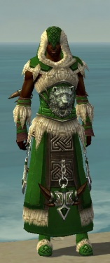 Dervish Norn Armor M dyed front.jpg