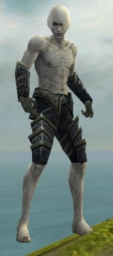 Necromancer Elite Cultist Armor M gray arms legs front.jpg