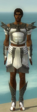 Paragon Ancient Armor M gray front.jpg