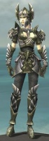 Warrior Templar Armor F gray front.jpg