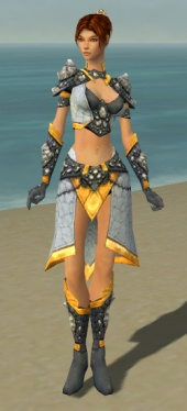 Elementalist Stoneforged Armor F dyed front.jpg