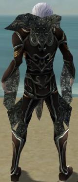 Necromancer Vabbian Armor M gray back.jpg
