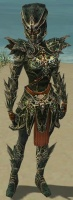 Warrior Elite Luxon Armor F gray front.jpg