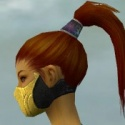 Assassin Kurzick Armor F dyed head side.jpg