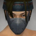 Assassin Seitung Armor M gray head front.jpg