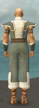 Monk Krytan Armor M gray back.jpg