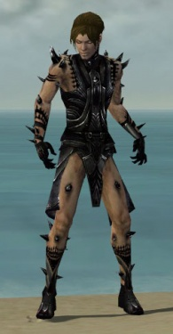 Necromancer Obsidian Armor M dyed front.jpg
