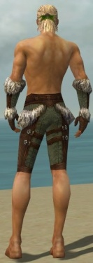 Ranger Elite Fur-Lined Armor M gray arms legs back.jpg