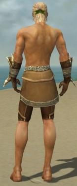 Ranger Asuran Armor M gray arms legs back.jpg