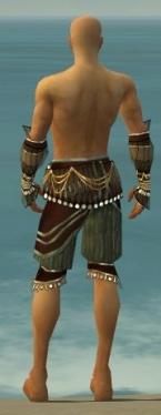 Ritualist Vabbian Armor M gray arms legs back.jpg