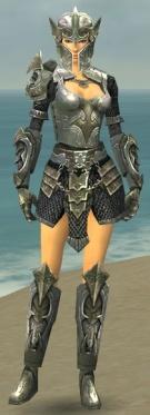 Warrior Elite Templar Armor F gray front.jpg
