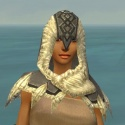 Dervish Norn Armor F gray head front.jpg
