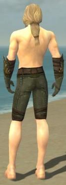 Ranger Elite Druid Armor M gray arms legs back.jpg