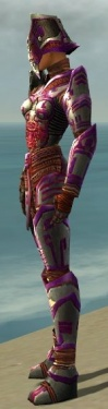 Warrior Asuran Armor F dyed side.jpg