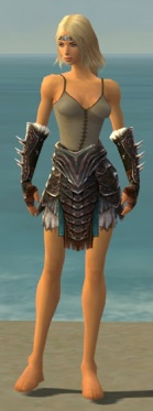 Warrior Norn Armor F gray arms legs front.jpg