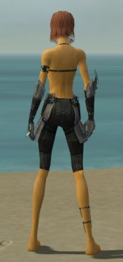 Assassin Luxon Armor F gray arms legs back.jpg