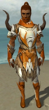 Paragon Norn Armor M dyed front.jpg