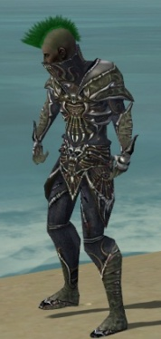 Necromancer Elite Necrotic Armor M gray side.jpg