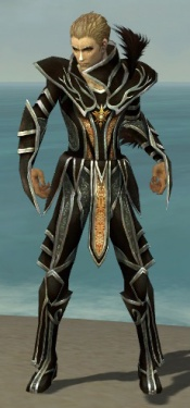 Necromancer Elite Sunspear Armor M gray front.jpg