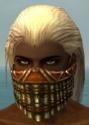 Ranger Elite Luxon Armor M dyed head front.jpg