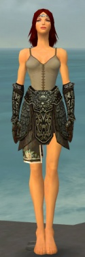 Warrior Canthan Armor F gray arms legs front.jpg