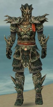 Warrior Elite Luxon Armor M gray front.jpg