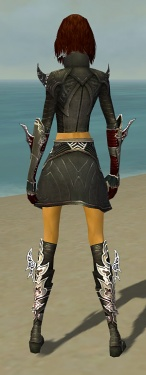 Assassin Deldrimor Armor F gray back.jpg