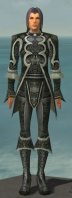 Elementalist Elite Canthan Armor M gray front.jpg