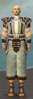Monk Censor Armor M gray front.jpg