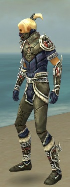 Assassin Norn Armor M gray side.jpg