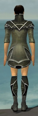 Elementalist Shing Jea Armor M gray chest feet back.jpg