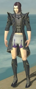 Elementalist Tyrian Armor M gray chest feet front.jpg