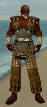 Monk Sunspear Armor M gray front.jpg