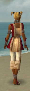 Monk Vabbian Armor F dyed back.jpg