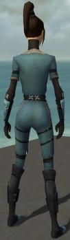Zenmai Am Fah Armor F gray back.jpg