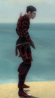 Necromancer Elite Cabal Armor M dyed side.jpg