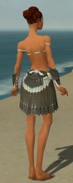 Paragon Elite Sunspear Armor F gray arms legs back.jpg