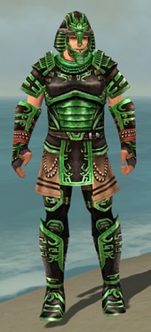 Warrior Ancient Armor M dyed front.jpg