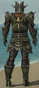 Warrior Wyvern Armor M gray back.jpg