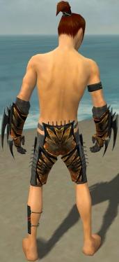 Assassin Elite Exotic Armor M gray arms legs back.jpg