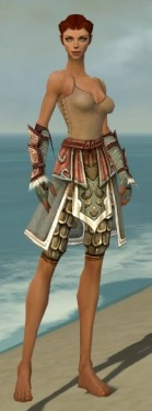 Ranger Elite Canthan Armor F gray arms legs front.jpg