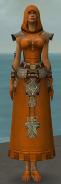 Dervish Istani Armor F dyed front.jpg