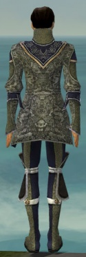 Elementalist Canthan Armor M gray back.jpg