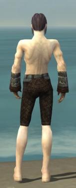 Elementalist Vabbian Armor M gray arms legs back.jpg