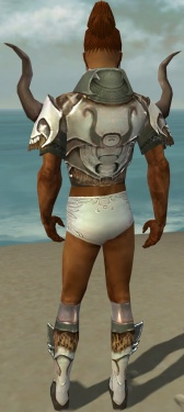 Paragon Norn Armor M gray chest feet back.jpg