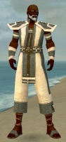 Monk Elite Saintly Armor M gray front.jpg