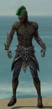 Necromancer Elite Necrotic Armor M gray arms legs front.jpg